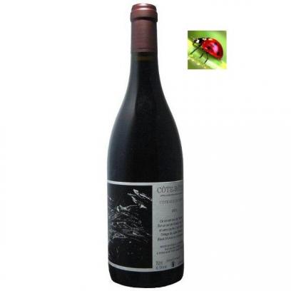 Côte-Rôtie « Coteaux de Tupin » 2016 Grand vin de la Vallée du Rhône Nord