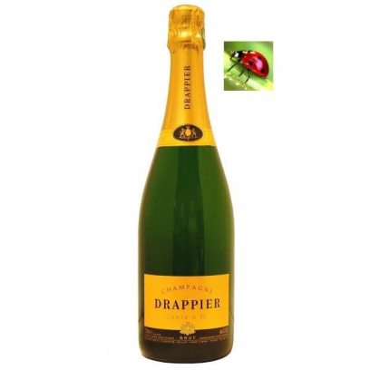 Champagne Brut « Carte d'Or »