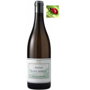Saint-Joseph blanc « Mairlant » 2017 vin vallée du Rhône Nord