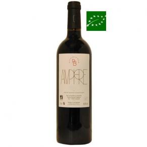 Gaillac Rouge « Amphore » 2017 vin bio sud ouest - cépage rare - bas sulfite