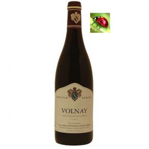Volnay 2015 grand vin de bourgogne rouge