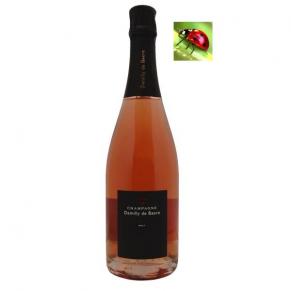 Champagne Brut Rosé - Champagne brut de propriétaire - Bulles fines - Champagne rosé